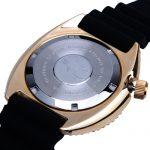 Heimdaller 6309 Bronze Turtle Watch