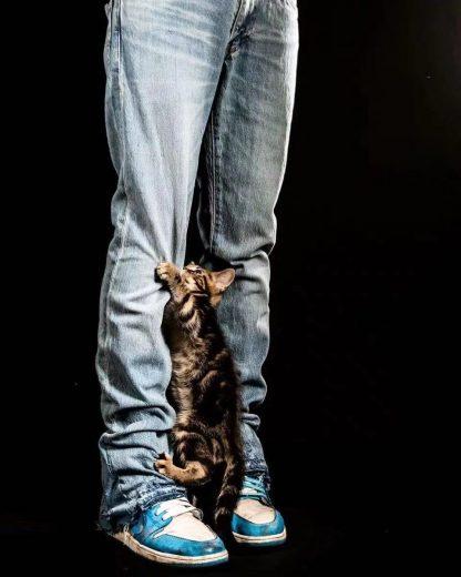 Brutalist Raw Hem Flared Jeans
